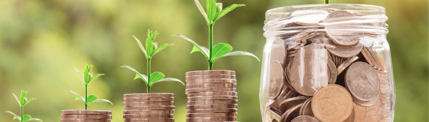 8 startups financées par WILCO en Juin 2021